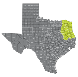 Texas Medical Transportation Region 5