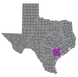 Texas Medical Transportation Region 9