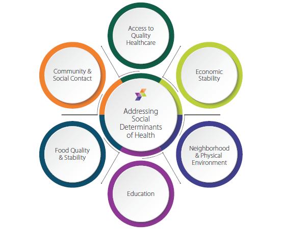 Social Determinants of Health: